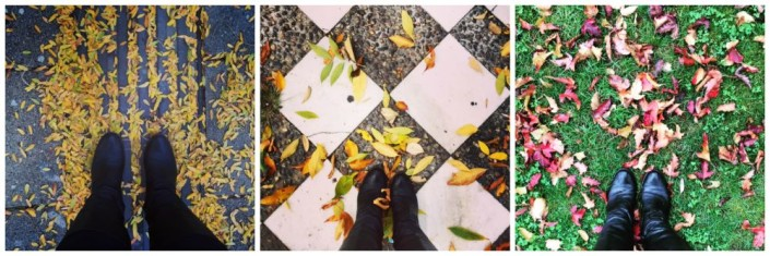 Fall in Vienna. Fall in Seville. Fall in Madrid