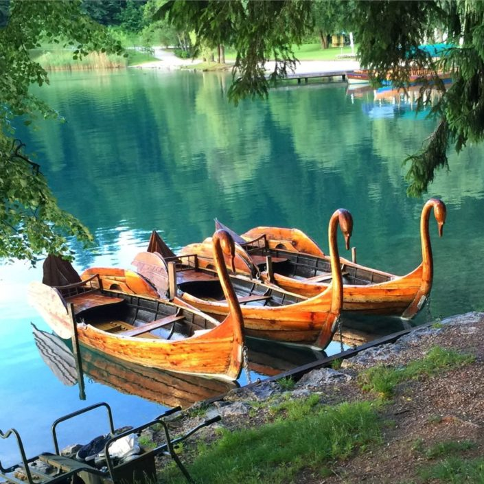Swan Boats in Bled